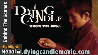 New Nepali Movie DYING CANDLE Pt. 2 Behind The Scenes 2017/2073 | Working With Animals