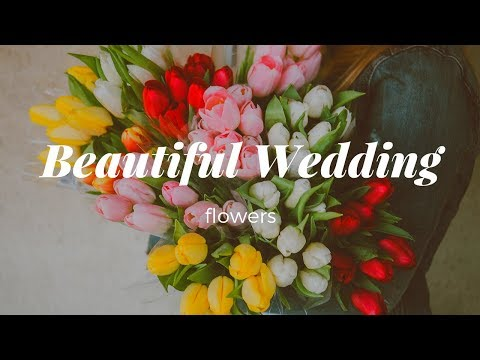 How To Get A Beautiful Wedding Flowers On A Modest Budget