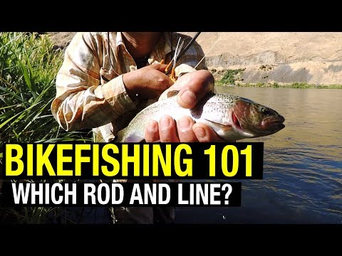 Best Beginner Fly Rod and Fly Line?