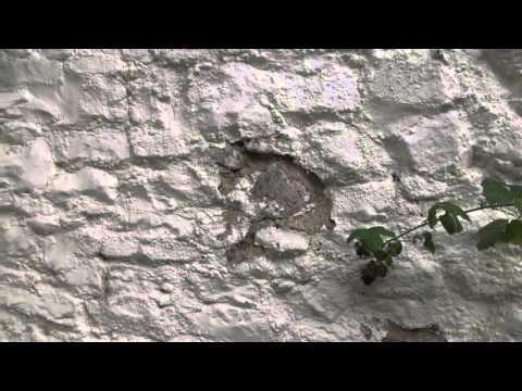 Plastic masonry paint - how it destroys walls!