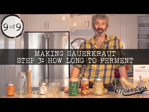 (9 of 9) Sandor Katz - How to Make Sauerkraut: How Long to Ferment?