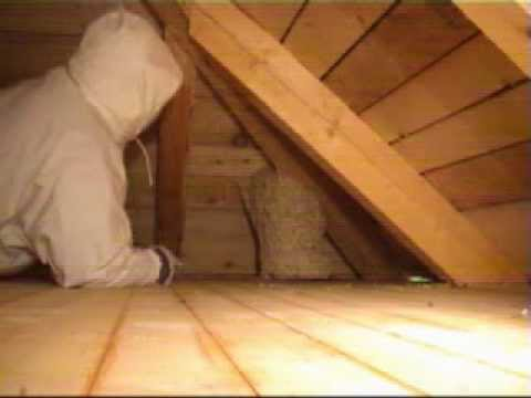 Remove wasp nest