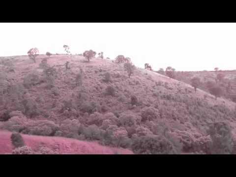Lyrica - No te olvide