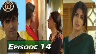 Dil Lagi Episode 14 - ARY Digital - Top Pakistani Dramas