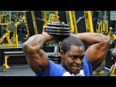 The Perfect Arm Workout!!! Make your Arms GROW!!!