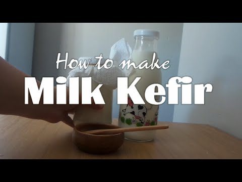 How to make Milk Kefir! Turn normal milk into a probiotic powerhouse!!