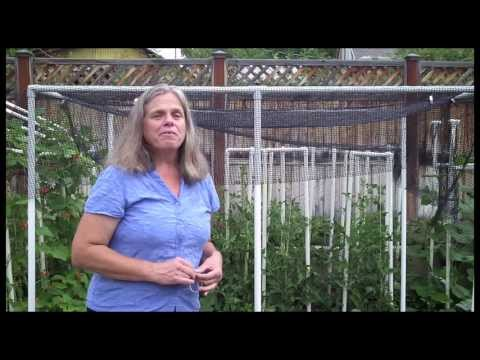 Quick Shade Canopy For The Vegetable Garden