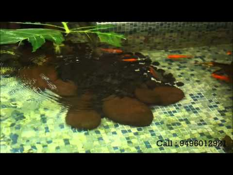 Fish Pond Kerala - AB Tech Water Solutions