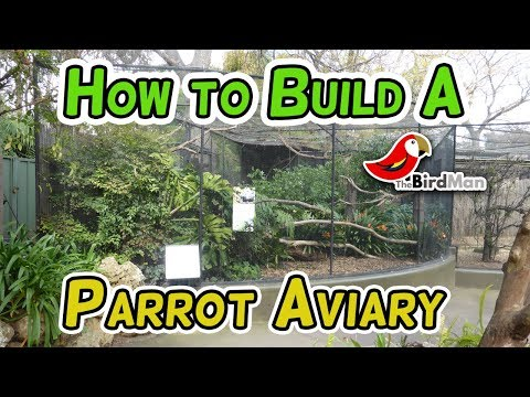 How to Build a Parrot Aviary