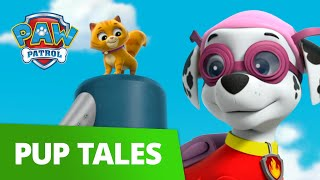 Marshall Rescues the Lost Kitties! 😺 PAW Patrol Pup Tales Rescue Episode!