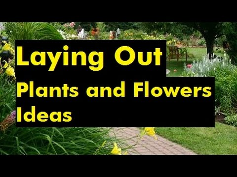 Laying Out Plants And Flowers Ideas