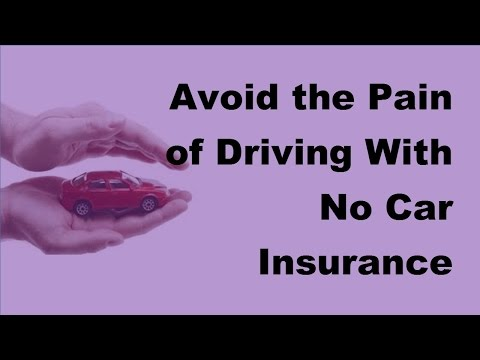2017 Motor Insurance Penalities | Avoid the Pain of Driving With No Car Insurance