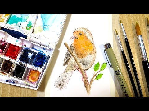 How to Paint a Robin in Watercolor || Cotman Watercolor & Micron Fineliner Painting