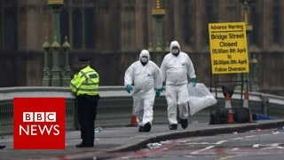 London Terror Attack: What witnesses saw - BBC News
