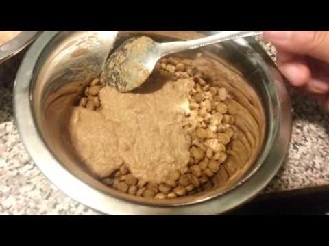 How to make bone broth meal for dogs