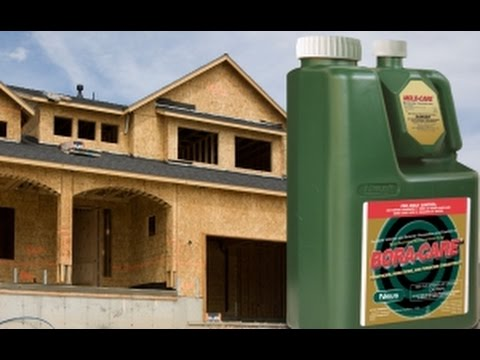 Bora-Care with Mold-Care - Mold-Care Training for Builders and Remodelers