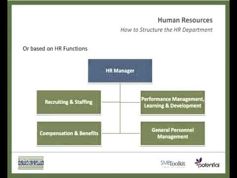 How to Structure the HR Department