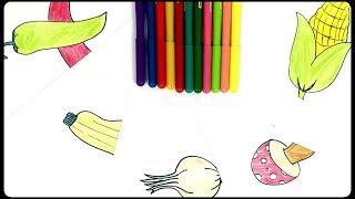 Sebze çizimi Videos 9tubetv