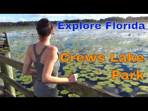 Ride That Train  At Crews Lake Wilderness Park || Explore Florida