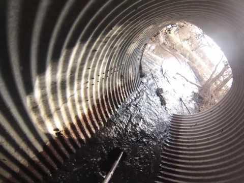 Beaver Dam in Drain Pipe
