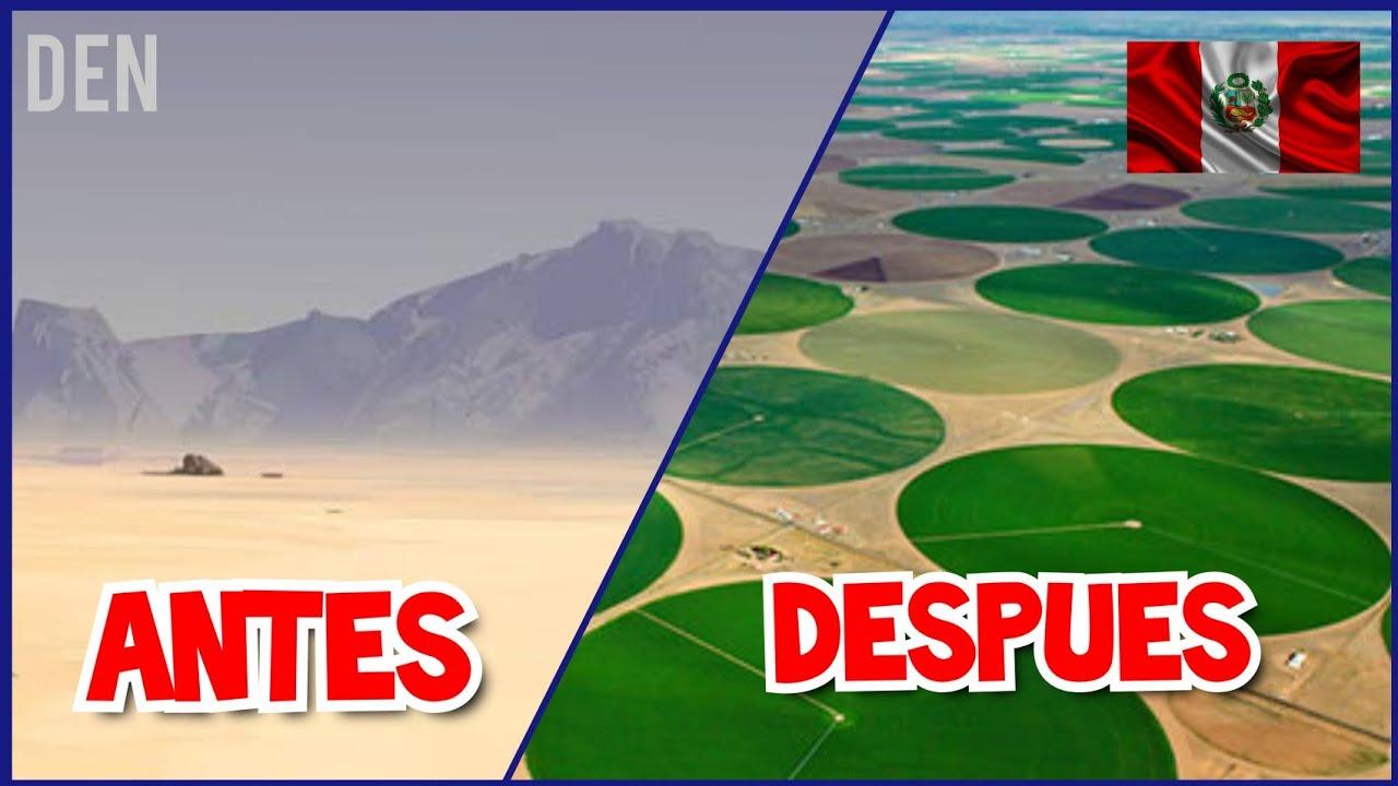 Perú convierte un desierto en un OASIS 2020  DEN