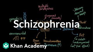 Visit us (http://www.khanacademy.org/science/healthcare-and-medicine) for health and medicine content or (http://www.khanacademy.org/test-prep/mcat) for MCAT related content. These videos do not provide medical advice and are for informational purposes only. The videos are not intended to be a substitute for professional medical advice, diagnosis or treatment. Always seek the advice of a qualified health provider with any questions you may have regarding a medical condition. Never disregard professional medical advice or delay in seeking it because of something you have read or seen in any Khan Academy video. Created by Arshya Vahabzadeh.  Watch the next lesson: https://www.khanacademy.org/test-prep/mcat/behavior/psychological-disorders/v/biological-basis-of-schizophrenia?utm_source=YT&utm_medium=Desc&utm_campaign=mcat  Missed the previous lesson? https://www.khanacademy.org/test-prep/mcat/behavior/psychological-disorders/v/categories-of-mental-disorders?utm_source=YT&utm_medium=Desc&utm_campaign=mcat  MCAT on Khan Academy: Go ahead and practice some passage-based questions!  About Khan Academy: Khan Academy offers practice exercises, instructional videos, and a personalized learning dashboard that empower learners to study at their own pace in and outside of the classroom. We tackle math, science, computer programming, history, art history, economics, and more. Our math missions guide learners from kindergarten to calculus using state-of-the-art, adaptive technology that identifies strengths and learning gaps. We