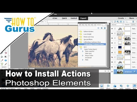 Photoshop Elements Actions : How to Install Photoshop Actions in 2018 15 14 13 12 11 Tutorial