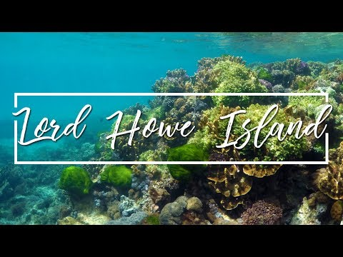 LORD HOWE ISLAND TRAVEL VLOG | HIKING AND SNORKELLING IN AUSTRALIA'S PARADISE (FULL HD)