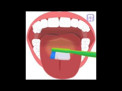 How to brush your teeth, flossing and tongue cleaning