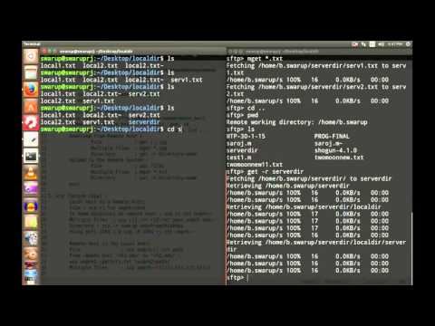 Linux in 11 Minutes: 6. Working With Remote Server (SSH, SFTP, SCP)