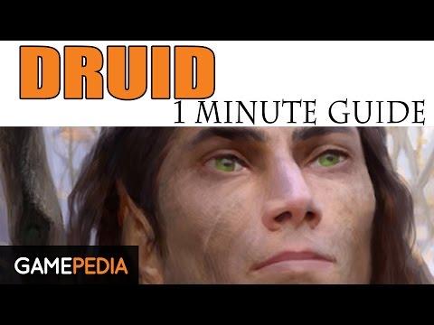 Pillars of Eternity: Druid Class - 1 Minute Guide - Gamepedia