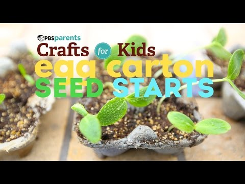 Egg Carton Seed Starts | PBS Parents | Crafts for Kids