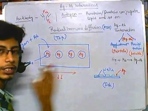 Radial immunodiffusion