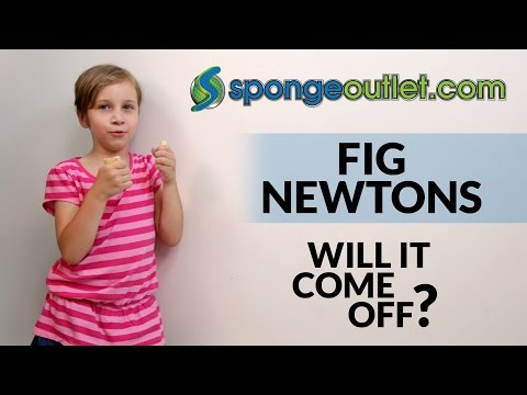 Magic sponge erasers cleaning fig cookies off a wall