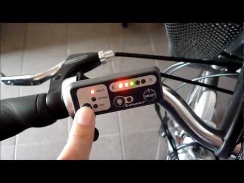 GIANT TWIST e-bike e-rider pedelec