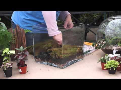 DIY Terrarium Tutorial