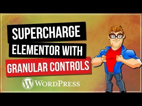 Supercharge ELEMENTOR with Granular Controls Plugin