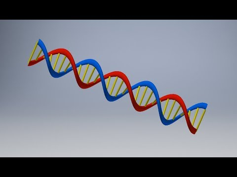 How To Make A Double Helix / DNA Strand In Inventor 2018