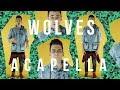 Selena Gomez, Marshmello - Wolves [ACAPELLA VERSION]
