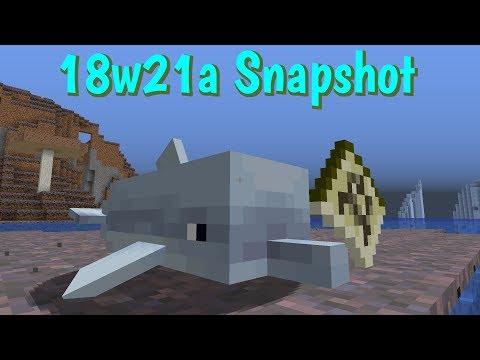 18w21a Snapshot- Dolphin Treasure Hunting!