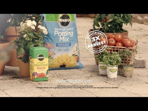 Get 3X The Harvest With Miracle-Gro® Potting Mix + Plant Food*