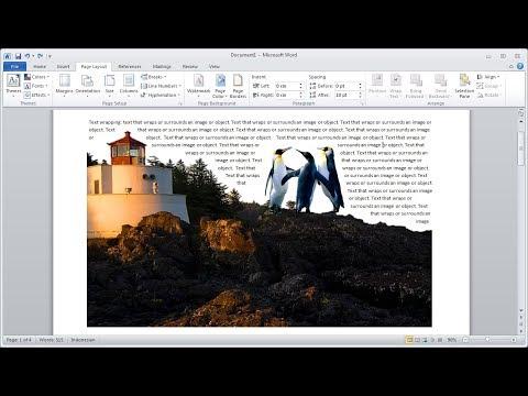 Belajar microsoft word |Cara Remove atau Menghapus Background Gambar Anda Sendiri di Word