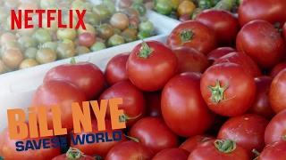 Bill Nye Saves the World tackles GMOs   Netflix
