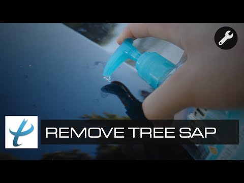 How To Quickly Remove Tree Sap From Car - Avoiding Costly Automotive Repairs