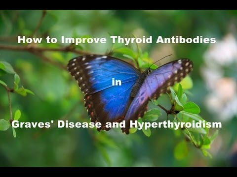 How to improve Thyroid Antibodies in Graves' Disease and Hyperthyroidism