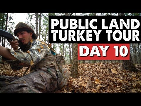 WATCH YOUR BACKSIDE!  - Public Land Turkey Tour Day 10