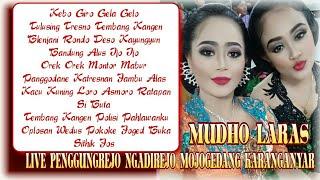 Full Album Nonstop Cokek Koplo Gayeng Mudho Laras live Penggungrejo ft Rini Epeledut & Mboke Gandhen