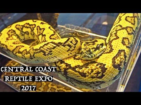 CENTRAL COAST REPTILE EXPO 2017