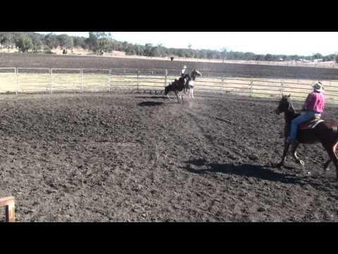MACRO mare bucking at Practice day at Hanks.m2ts