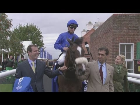 Eleven Godolphin horses test positive for steroids